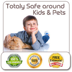 Safe For Pets and Kids